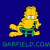 Cartoons Garfield Garfield chair 882