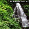 Peisaje Cascade  10393