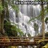 Peisaje Cascade  10412