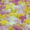 Flori Mix de flori  4213