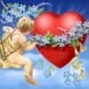 Dragoste Inimi  2298