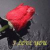 Dragoste Diverse  2320