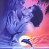 Dragoste Diverse  2360