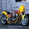 Moto Diverse Harley Davidson 6280