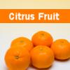 Fructe Diverse Portocale 6456