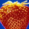 Fructe Diverse Capsuni 6547