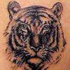 Tatuaje Galerie1  6710