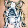 Tatuaje Galerie1  7929