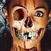 Horror Diverse  9581